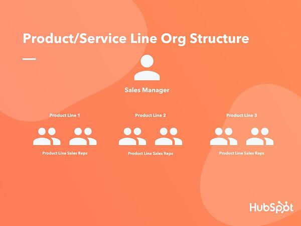 Product Service Line Org Structure