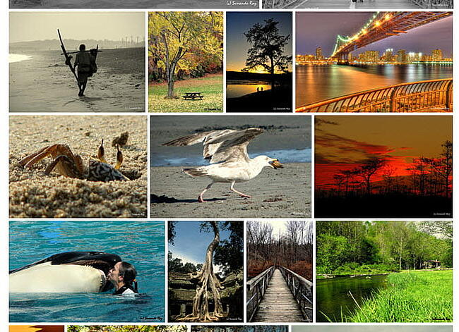 Random justified gallery layout of Instagram photos created with Photonic Gallery & Lightbox plugin
