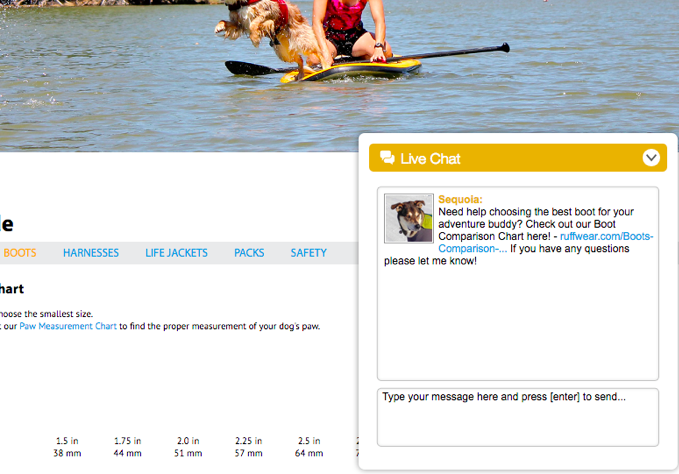 Proactive live chat window on bottom righthand corner of Ruffwear website