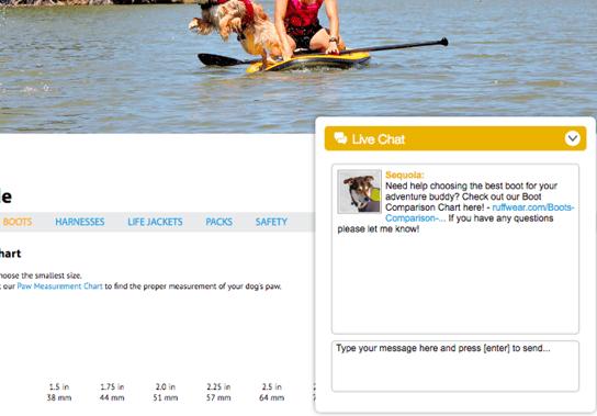 Proactive live chat window on bottom righthand corner of Ruffwear website