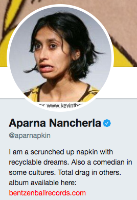 Funny twitter bio from @aparnapkin