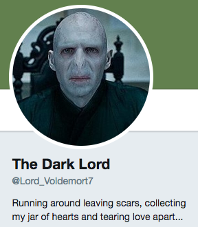 Funny Twitter bio from @Lord_Voldemort7