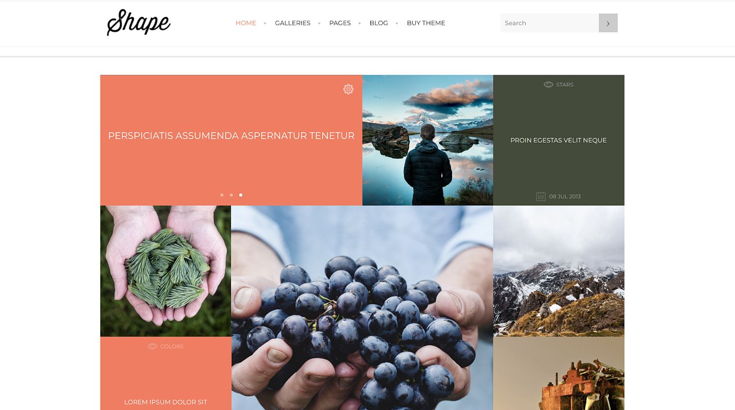 shape-wordpress-theme