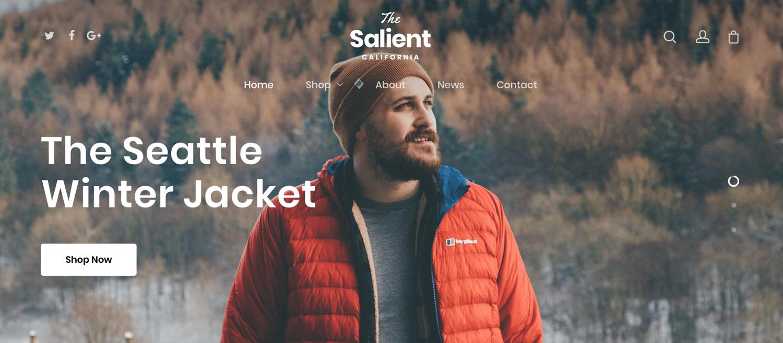 salient-woocommerce-wordpress-theme