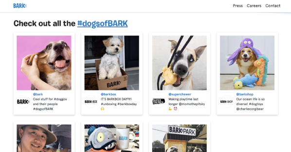 barkbox d2c brands marketing instagram hashtag
