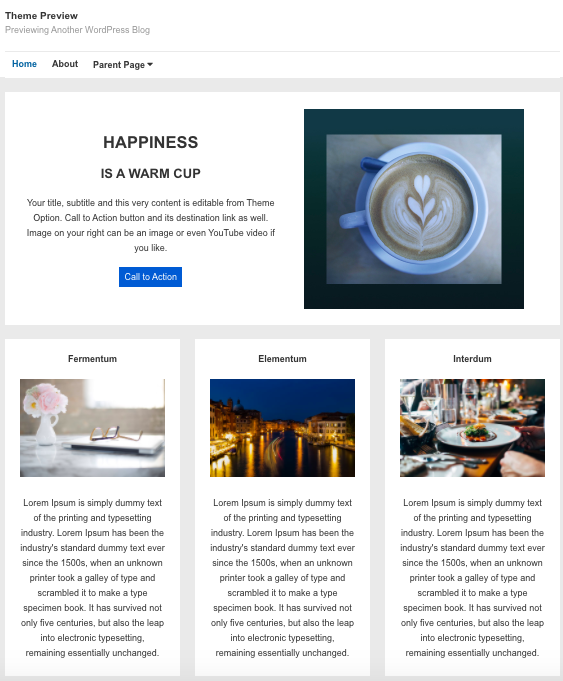 Responsive WordPress theme by CyberChimps demo