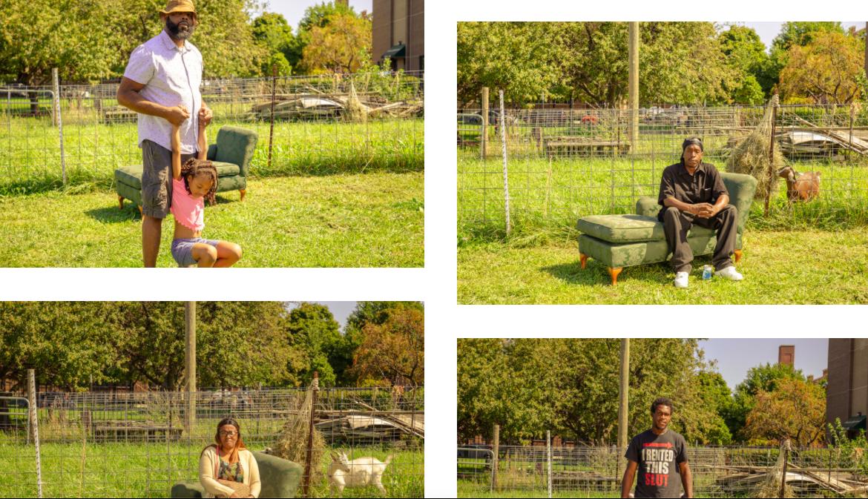 GlennArt Farm's Project Stamp Shoot
