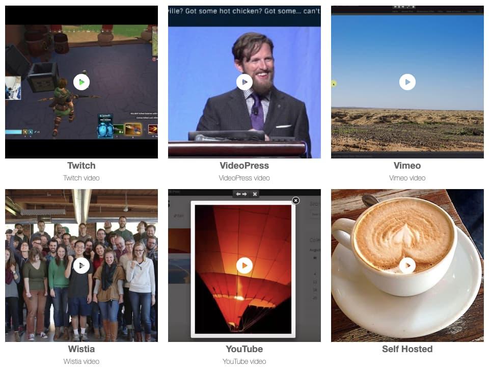Envira Gallery plugin video gallery plugin