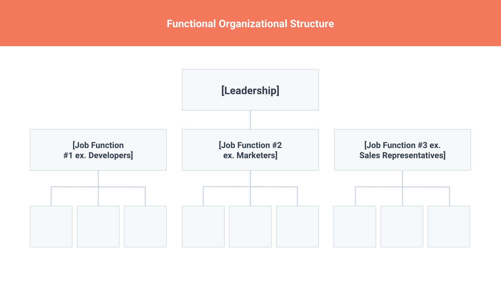 functional org structure chart