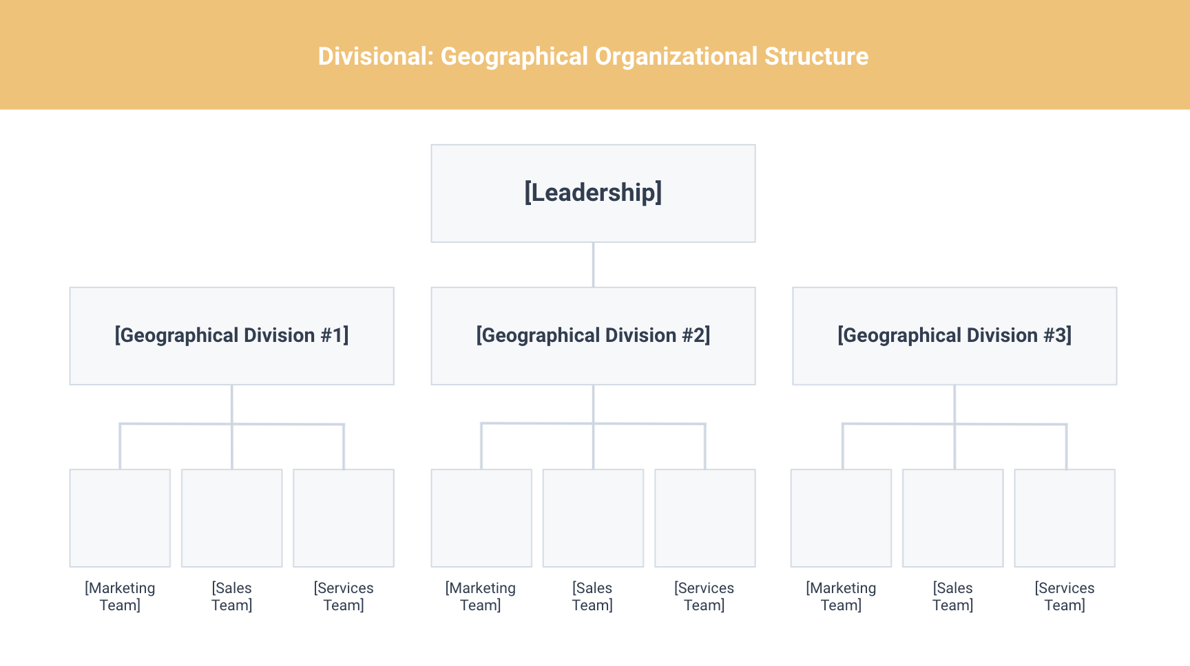 geographical org structure template