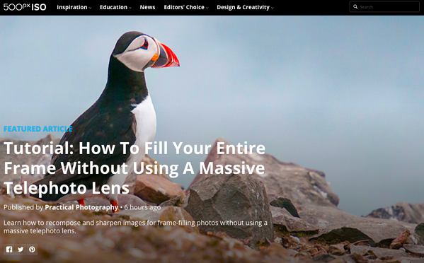 beautiful blog design 500px