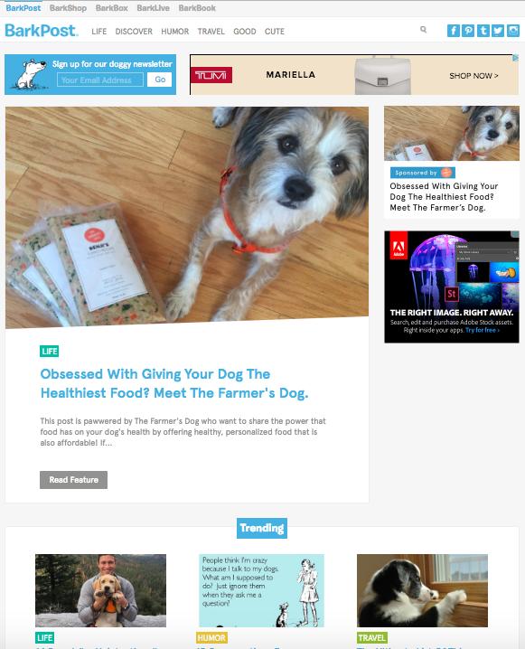 beautiful blog design barkpost