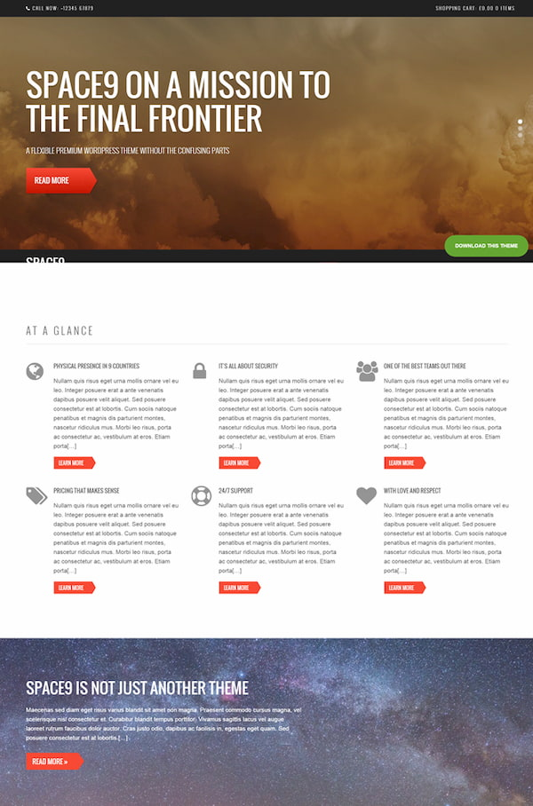 Space WordPress theme demo for tech business