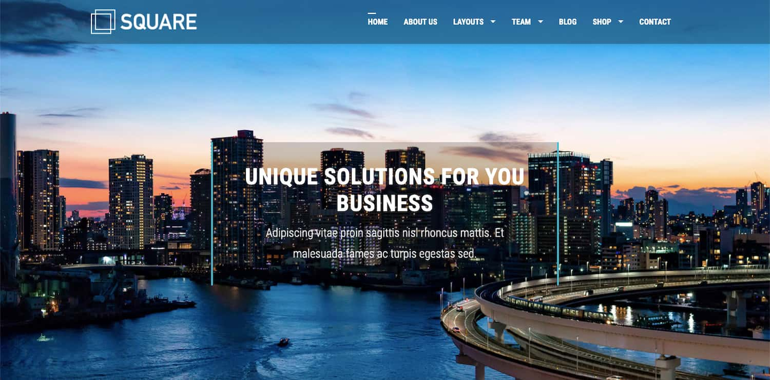 Square theme demo shows multipurpose theme thats compatible with BuddyPress plugin