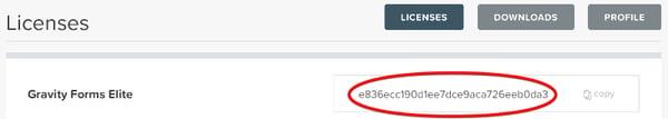 Add a license key to Gravity Forms WordPress plugin.
