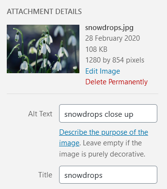 Adding alt text to an uploaded image in WordPress.