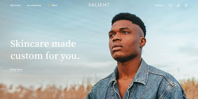 WordPress theme Salients Ecommerce demo site features hero image with parallax scrolling