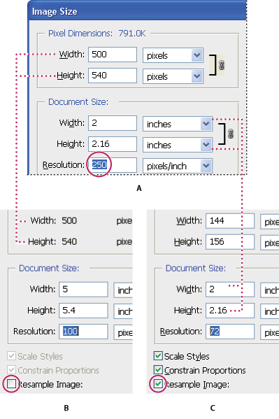 adjusting resolution in adobe photoshop image size feature