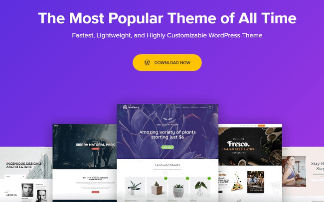 astra wordpress blog theme