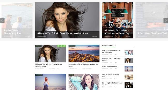 demo page for the best wordpress theme for seo blogging