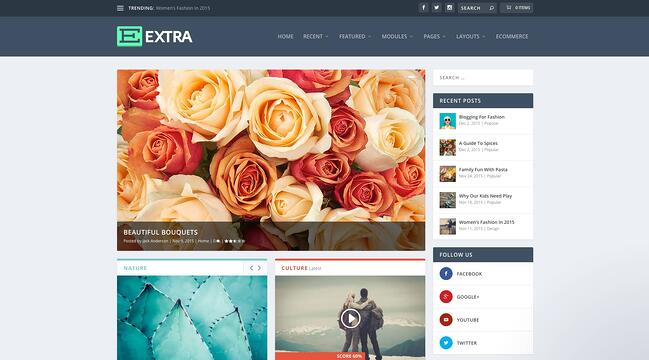 demo page for the best wordpress theme for seo extra