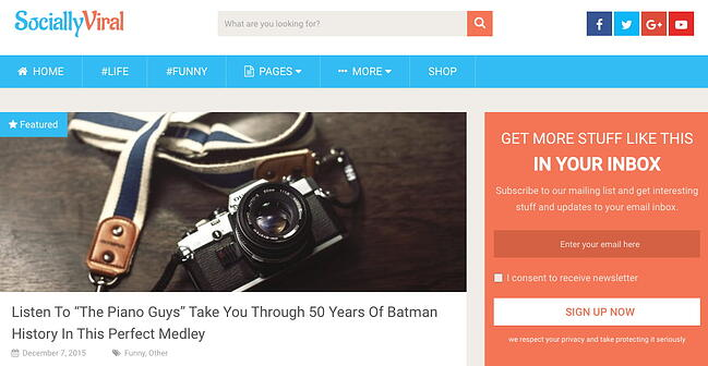 demo page for the best wordpress theme for seo sociallyviral