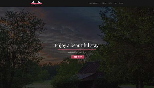 demo page for the best wordpress theme for seo x