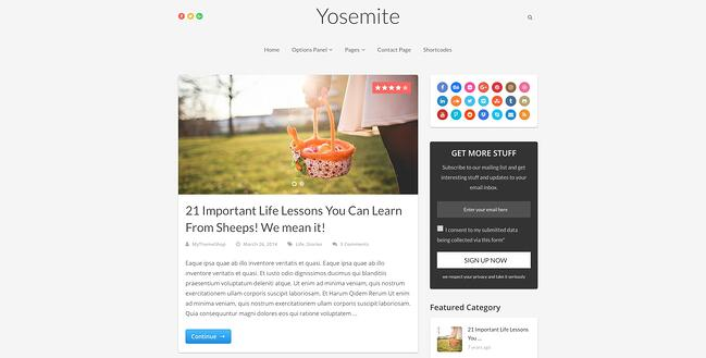 demo page for the best wordpress theme for seo yosemite