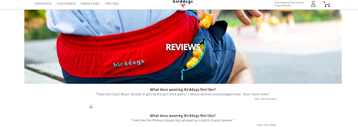 Testimonial page example from Birddogs