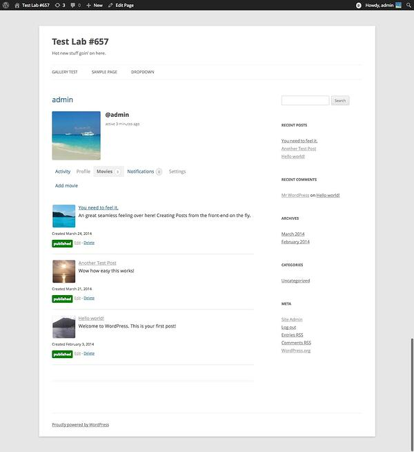 example of a user profile page with publish posts from buddyforms plugin