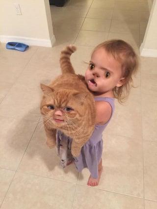 貓snapchat-faceswap.jpg