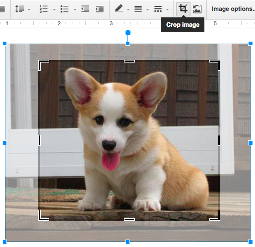 Cropping a picture of a puppy inside a Google Doc