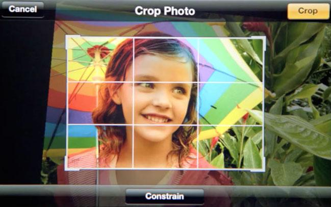 crop-photo-1.jpg