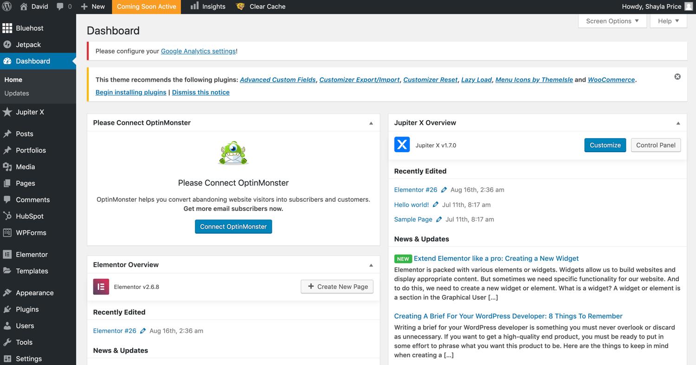 example of a WordPress dashboard