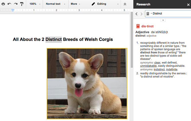 Dictionary sidebar in a Google Doc