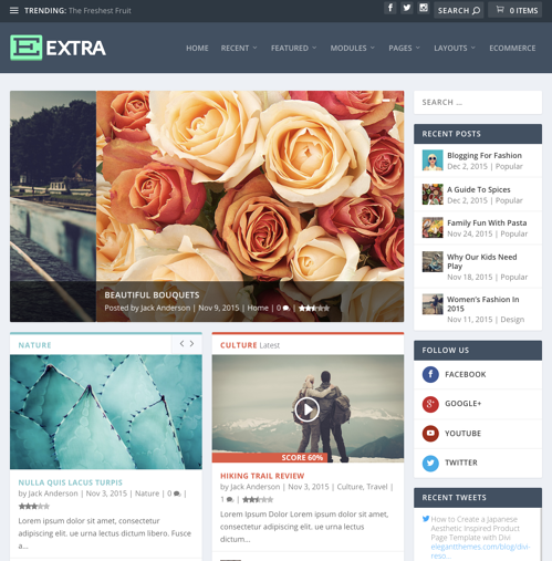 Review For  WordPress Themes Elegant Themes