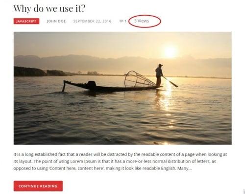 example of WordPress post views