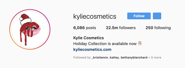 Kylie Cosmetics Instagram Profile picture