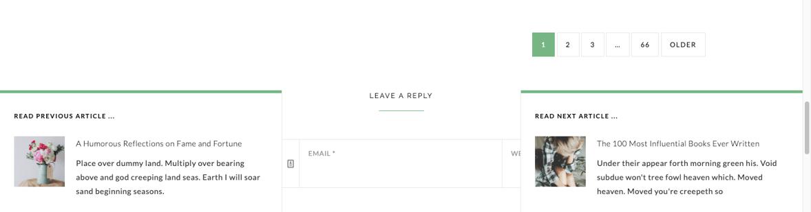Next Post Fly Box WordPress plugin