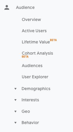 google-analytics-audience-report