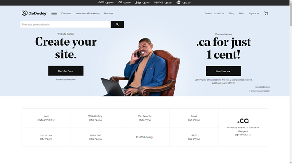 godaddy domain registrar homepage