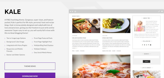 kale wordpress theme for bloggers