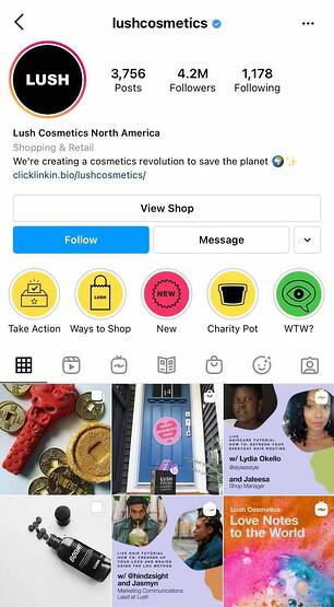 lush Instagram profile example for social media content marketing