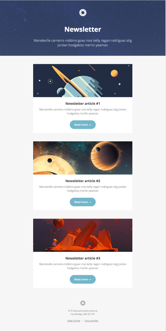 Pook email newsletter template by Litmus