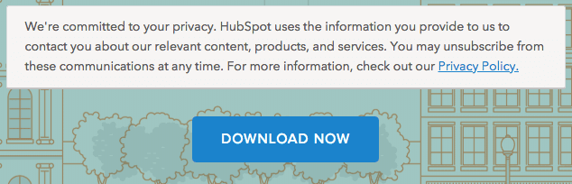 HubSpot privacy policy on lead-capture form above Download button