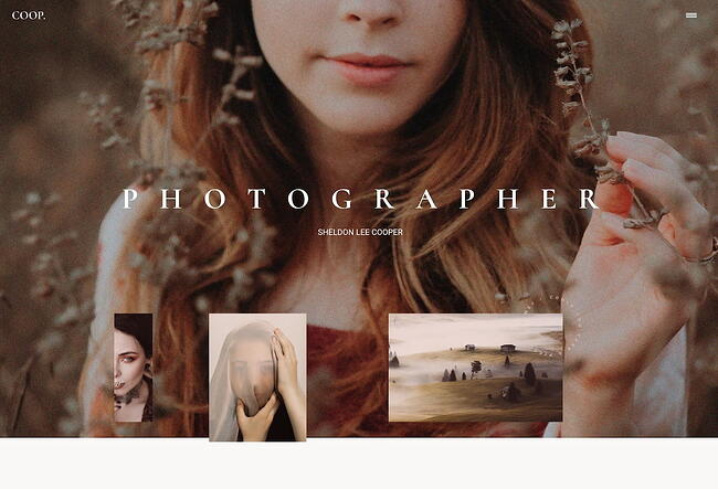 Ronneby WordPress theme for artists and creatives
