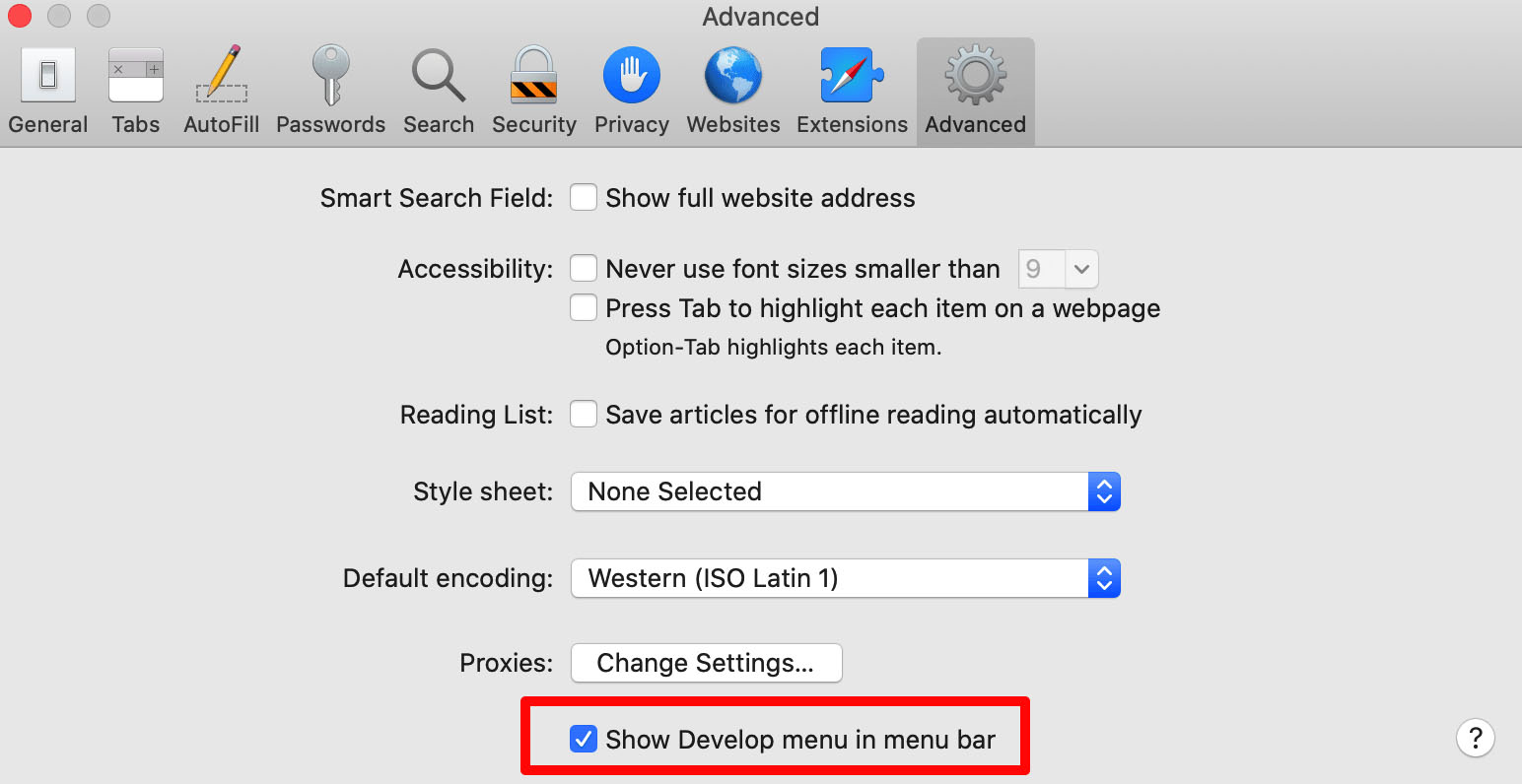 Copy of the advanced Safari settings