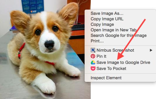 save-image-to-google-drive