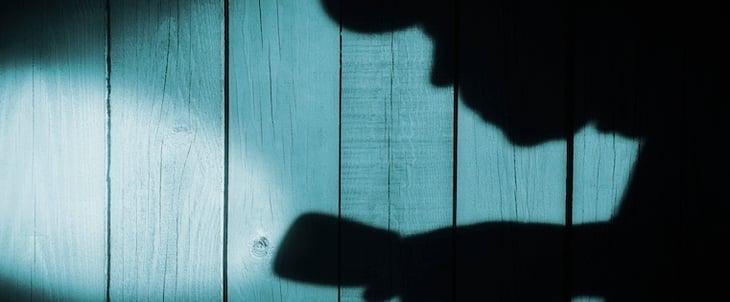 searching shadow.jpg