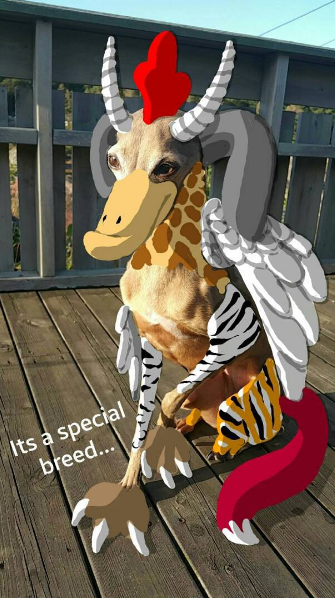 Amazing Snapchat drawing of dog with features from mythical creatures